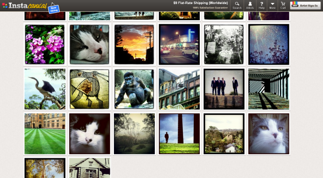 photos smallfox Instacanvas